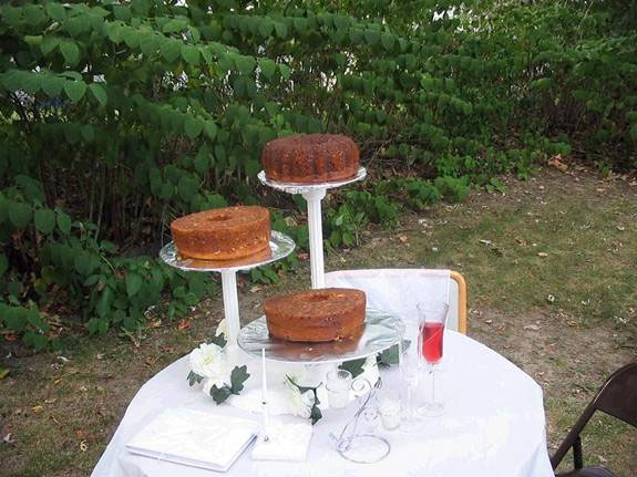 Ultra tacky backyard wedding AND the worst wedding cake ever made